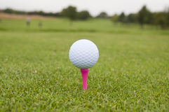 Golf Ball on Tee. Golf Ball and Tee on Golf Course in Worcestershire UK stock photo