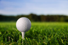Golf ball on tee. Green grass, blue sky Royalty Free Stock Photo
