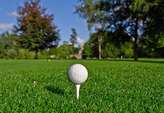 Golf ball on tee. In a beautiful golf club Royalty Free Stock Image