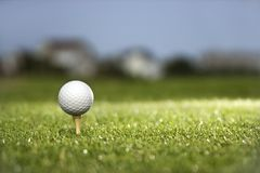 Golf ball on tee. Golf ball and tee on golf course Royalty Free Stock Image