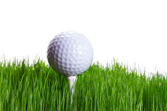 Golf ball on the tee. In green grass over white Royalty Free Stock Photo