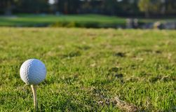 Golf ball on a tee. A golf ball sitting on a tee in preparation of being hit to start the hole Royalty Free Stock Photos