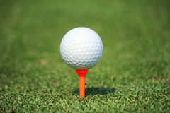 Golf ball with tee. On green grass Royalty Free Stock Image