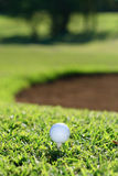 Golf ball and tee. A set of golf ball and tee on grass Stock Photos