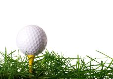 Golf Ball on Tee. In Grass Isolated on White Background Stock Photos