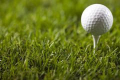 Golf ball on tee. In grass Stock Photo