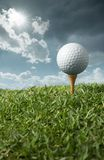 Golf ball on tee. With sunny day Stock Image