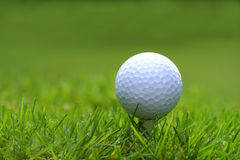Golf ball with tee. In the grass Royalty Free Stock Photography