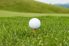 Golf ball on a tee Royalty Free Stock Images