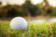 Golf ball on a tee against. Stock Image