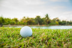 Golf ball on a tee against. Royalty Free Stock Photography