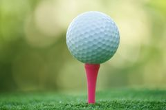 Golf ball on tee in beautiful golf course at bokeh background. Golf ball on green in golf course. At Thailand stock photo