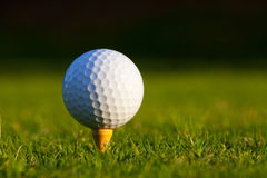 Golf Ball on tee close up Royalty Free Stock Photography