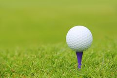 Golf ball on tee. Close up view Royalty Free Stock Images