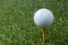 Golf ball on tee Stock Image
