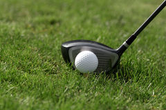 Golf ball tee - drive grass Stock Photography