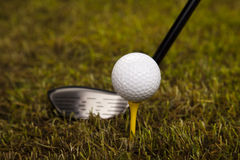 Golf ball on tee in driver Royalty Free Stock Image