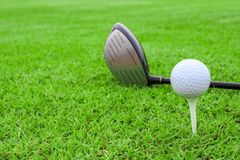 Golf ball on a tee and driver in green grass course Stock Image