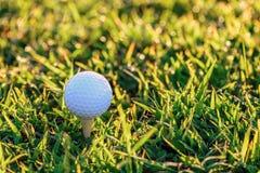 Golf ball with tee on early moning sunlight Stock Photos