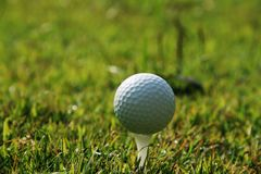 Golf ball on tee in the evening golf course with sunshine in tha. Iland Stock Image