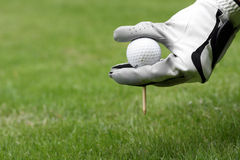 Golf ball tee glove Royalty Free Stock Image