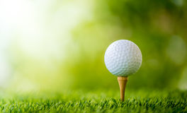 Golf ball on tee. Ready to play Royalty Free Stock Image
