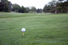 Golf ball on tee in grass. Golf ball on tee in green grass Royalty Free Stock Images