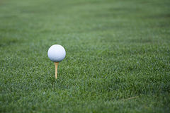 Golf ball on tee in grass. Golf ball on tee in green grass Stock Photo