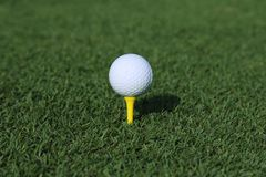 Golf ball on a tee Stock Image