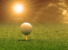 Golf ball and tee on green grass Stock Images