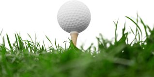 Golf Ball on tee on green grass stock photo