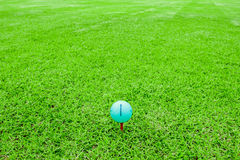 Golf ball on a tee in green grass course Royalty Free Stock Images