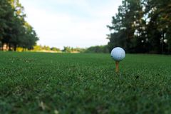 Golf ball on tee at a low perspective Royalty Free Stock Photos
