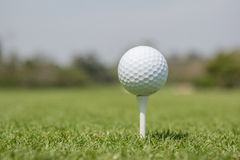 Golf ball on tee off zone with blurred golf course background. Stock Photos