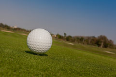 Golf ball on tee off zone with golf course background. Royalty Free Stock Images