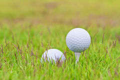 Golf ball. On tee over a blurred green Royalty Free Stock Image