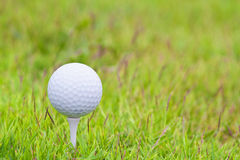 Golf ball. On tee over a blurred green Royalty Free Stock Images