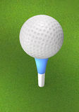 Golf ball on the tee peg on the grass. Stock Images