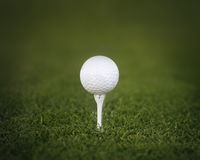 Golf ball tee shot green grass Stock Photos