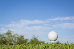 Golf ball on a tee with sky background Royalty Free Stock Image