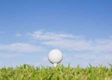 Golf ball on a tee with sky background Stock Image