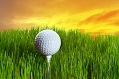 Golf ball on tee at sunset. Golf ball on tee in the grass at sunset Stock Image