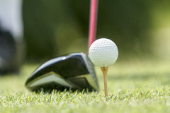 Golf ball on a tee. Before swing stock image