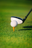 Golf ball on tee. White Golf ball on tee Stock Image