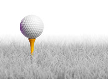 Golf Ball on Tee in White Grass. 3d render of golf ball on tee Stock Photo