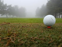 Golf ball on tee in winter. Golf ball on tee in foggy conditions Stock Photos