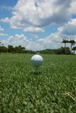 Golf ball teed up on a tee on the green under a blue sky royalty free stock photo