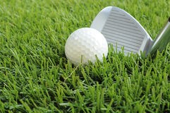 Golf ball about to be hit Stock Images