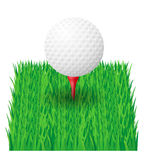 Golf ball vector illustration Stock Images