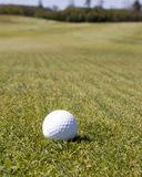 Golf ball Waits. A white golf ball waits on the fairway Stock Photography